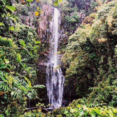 maui travel guide + grand wailea hotel review