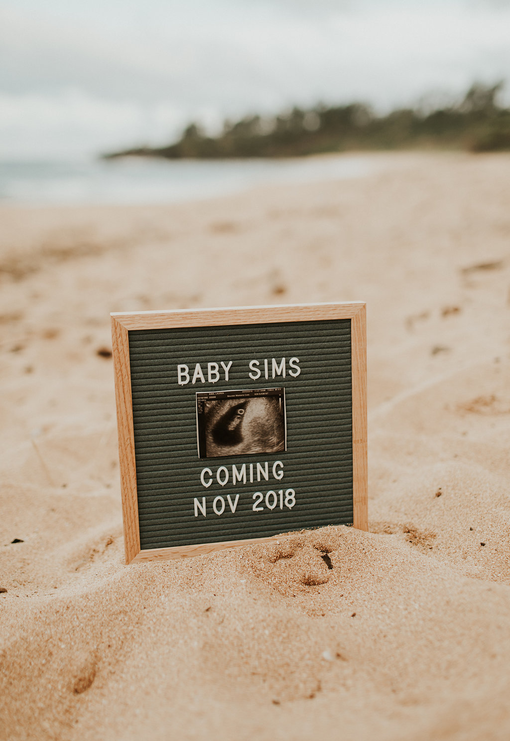 lauren sims pregnancy announcement